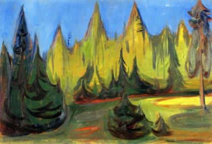 Dark Spruce Forest
