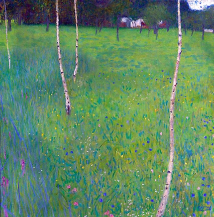 Farmhouse With Birch Trees Young Birch Trees