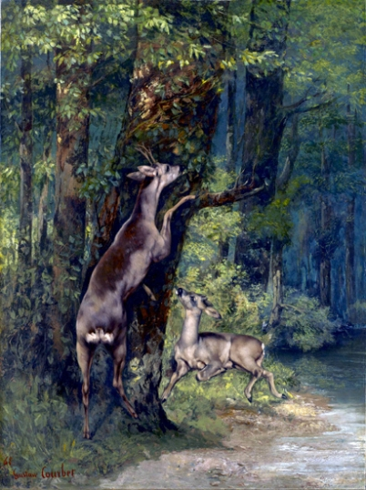 Deer in the Forest 1868