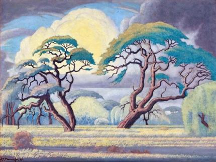 Bushveld Landscape