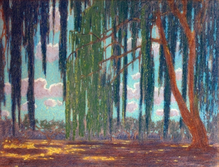 Willow Trees in Summer