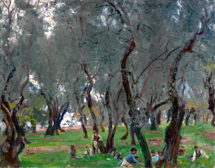 The Olive Grove 1910