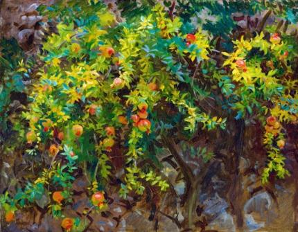 Pomegranates, Majorca 1908