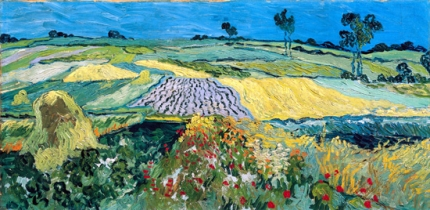 The Plain Of Auvers 1890