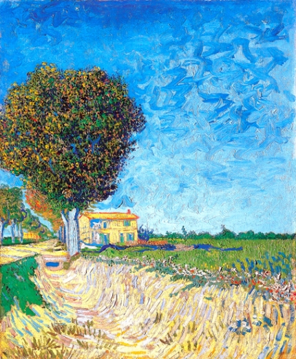 A Lane Near Arles (Side Of A Country Lane)