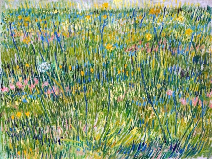 Patch Of Grass 1887
