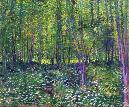Trees And Undergrowth 1887